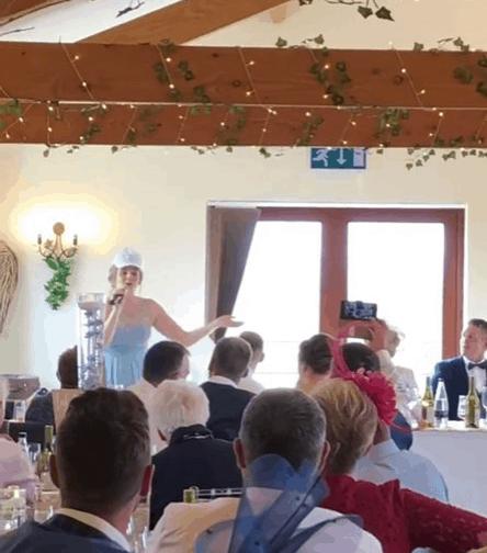 Giving a Wedding Speech